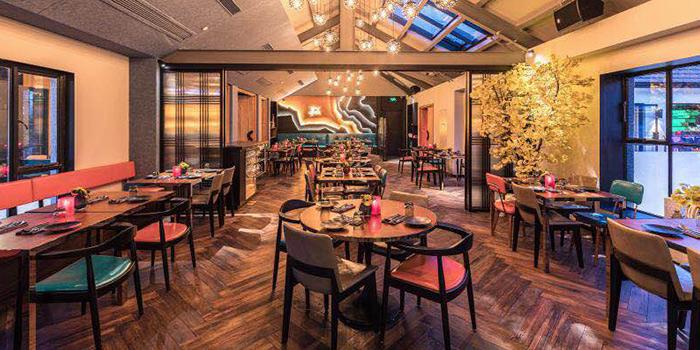 Indoor of Colca located on Hengshan Lu, Xuhui, Shanghai