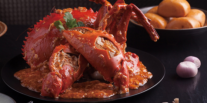 Chilli Crab from Jumbo Seafood (IFC) located in Pudong, Shanghai