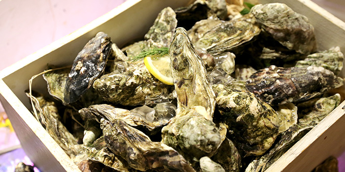 Oysters from VIE All-Day Dining (Sofitel Sheshan) located in Songjiang, Shanghai