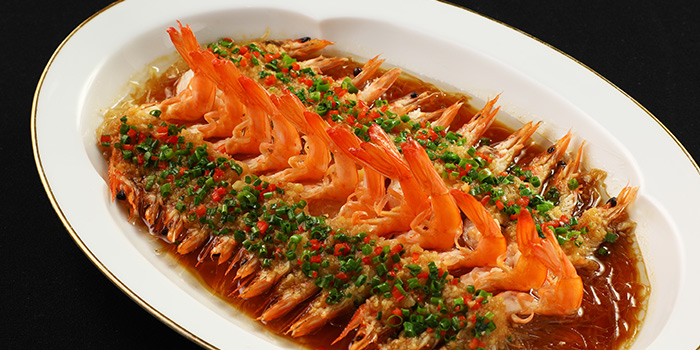 Fish of Lady Bund located in Huangpu, Shanghai