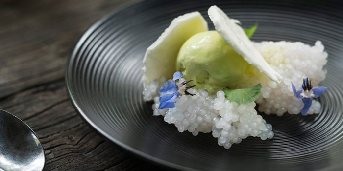 Dessert from Ginger Modern Asian Bistro located in Xuhui, Shanghai