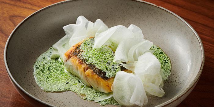 Fish of Pelikan located in Jing