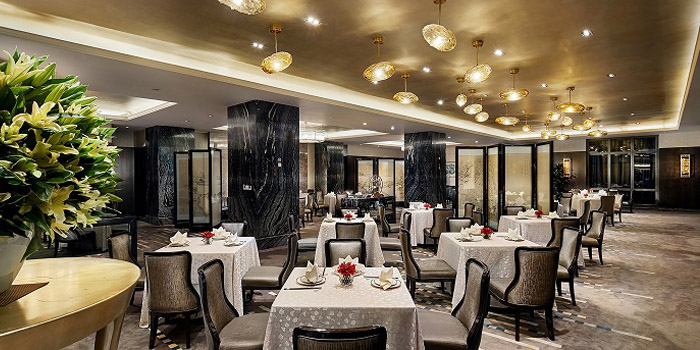Indoor of Yuexuan Chinese Restaurant (Hilton Shanghai Hongqiao) located in Minhang, Shanghai