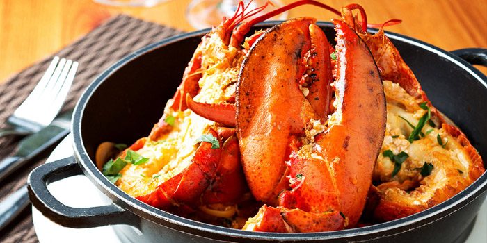 Lobster of Jstone. Italian Kitchen & Bar (Shimao Tower) located in Pudong, Shanghai
