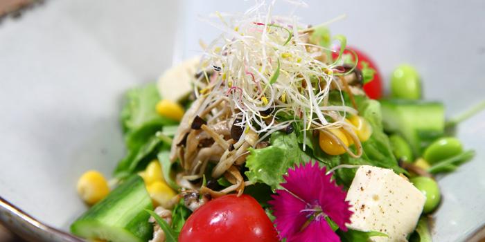 Salad of Sun With Aqua located in Huangpu District, Shanghai