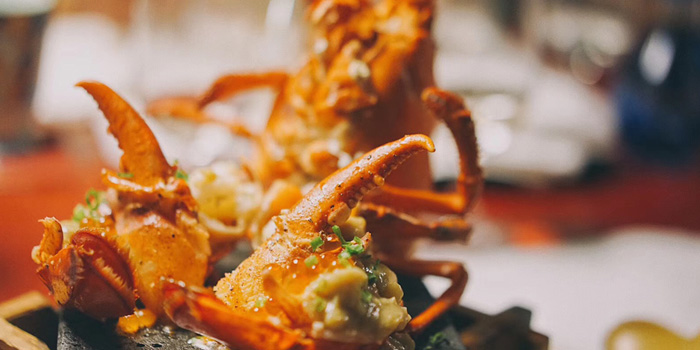 Lobster of Appetizer of Kaiseki Ochobo located in Xuhui, Shanghai