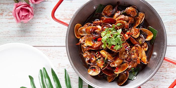 Clams from Xixi Bistro located in Huangpu, Shanghai