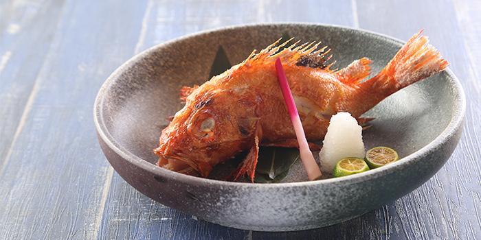 Rock Fish of Takumi Robatayaki & Sake Bar (Kerry Centre) located on Nanjing Xi Lu, Jing