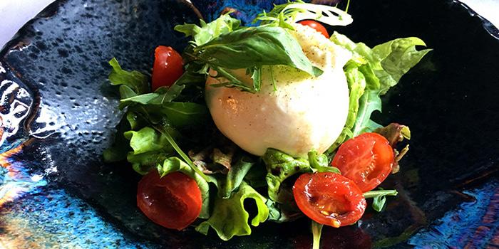 Burrata Salad of CASANOVA located on the bund 6, Huangpu District, Shanghai, China