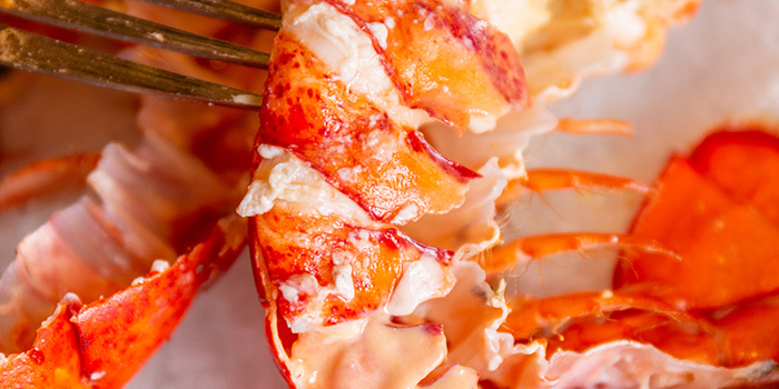 Lobster of Pedra Alta Located in pudong, shanghai