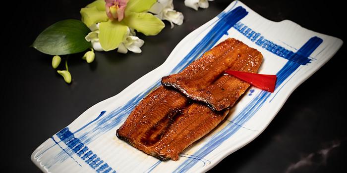 Eel of Tsuru (Shangri-La Jing