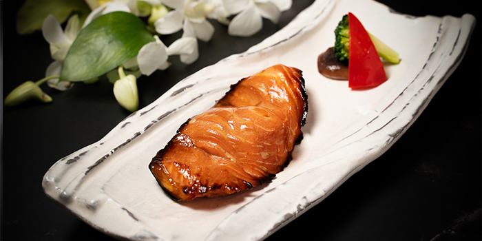 Salmon of Tsuru (Shangri-La Jing