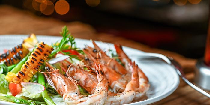 Shrimp of of Yasmine
