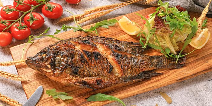 Fish of ROKA located in Minhang, Shanghai