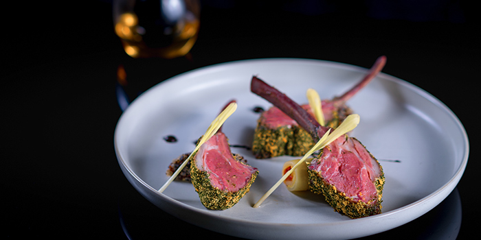 Lamb Rack from Albero Spanish Restaurant in Grand Kempinski Hotel Shanghai, Pudong, Shanghai