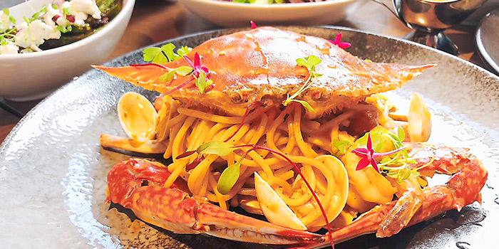 Crab of Kathleen
