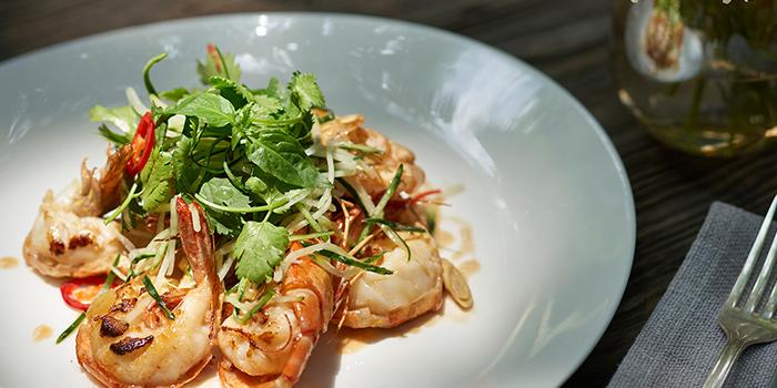 Shrimp of Ginger Modern Asian Bistro located in Xuhui, Shanghai