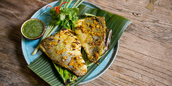 Fish from Mithai located in Xuhui District, Shanghai