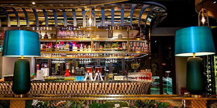 Bar of Element Fresh Vintage(Super Brand Mall) located in Lujiazui, Shanghai
