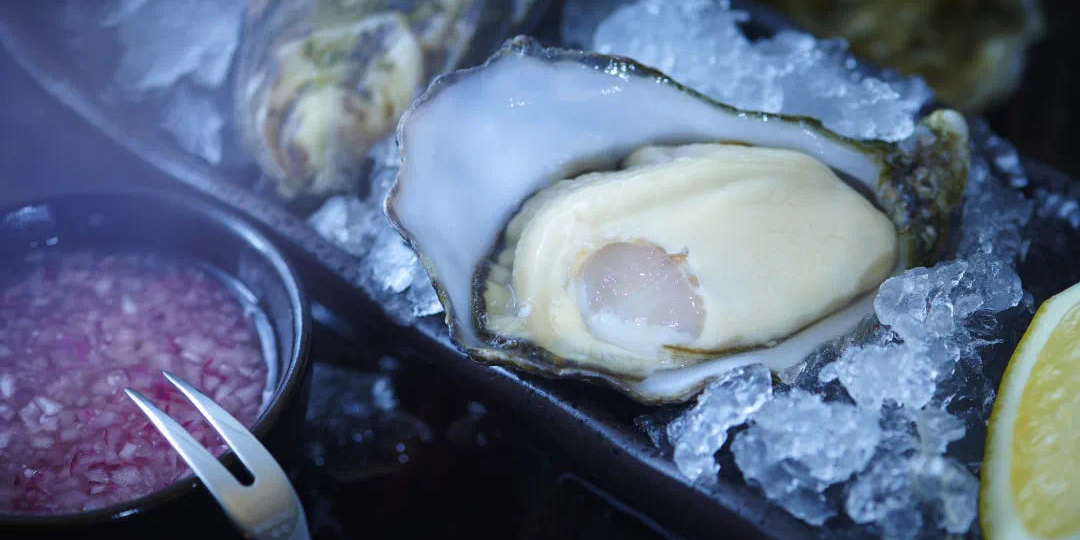 Oyster of The Anchor located in Huangpu, Shanghai