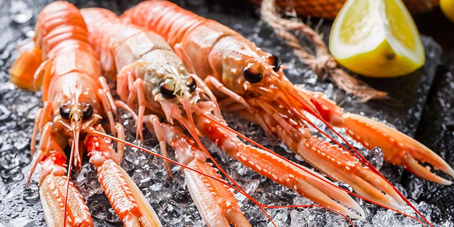Lobster of Latina (Tongren Lu) in Jingan, Shanghai